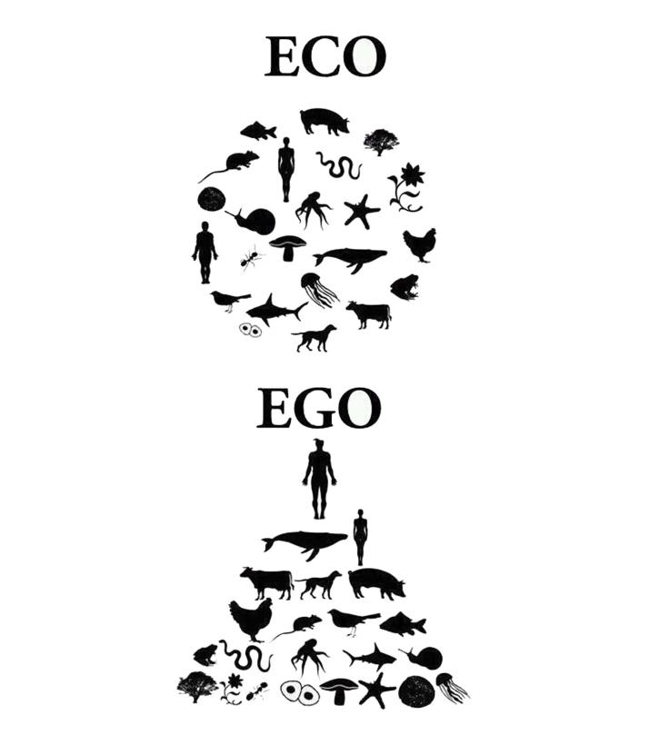 eco-ego.jpg